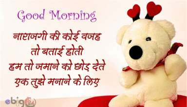 सुप्रभात / good morning message 12 – good morning status